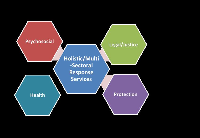 Figure 1: Multi-Sectoral Survivor Programming